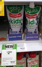 Vaalia 140g Yoghurt Lactose Free Kids Blueberry