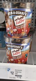 Ben Jerrys 458mL Non Dairy Un Fudge Our Future 1